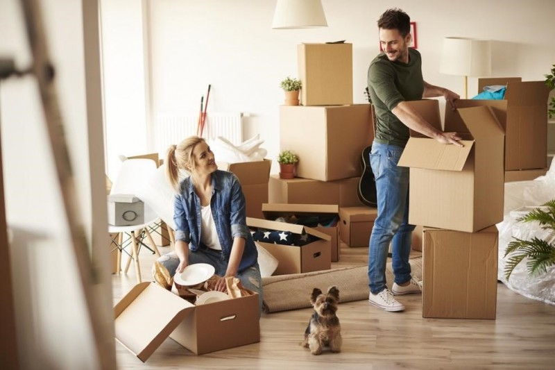 To hire or buy boxes?